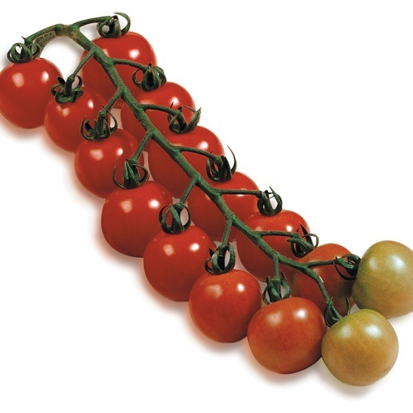 meilleures tomates gustatives